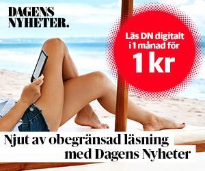 dn-digitalt-1kr
