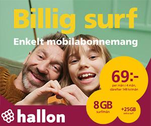 hallon-8gb-surf-69kr