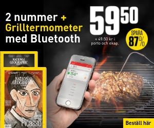 national-geographic-bluetooth-grilltermometer