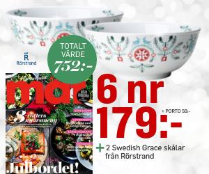 allt-om-mat-swedish-grace