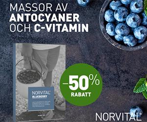 norvital-blueberry-halva-priset