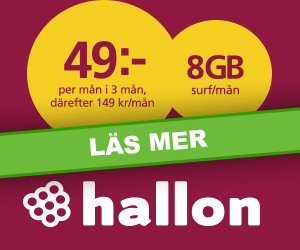 hallon-vinter2019-8gb-surf-49kr