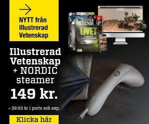 illustrerad-vetenskap-nordic-steamer