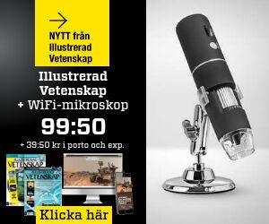 illustrerad-vetenskap-wifi-mikroskop