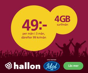 hallon-4gb-surf-49kr