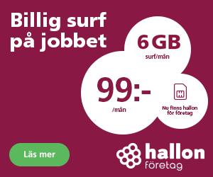 hallon-foretag-fran-99 kr