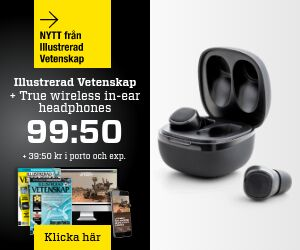 illustrerad-vetenskap-true-wireless-in-ear