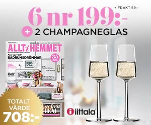 allt-i-hemmet-champagneglas