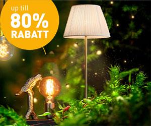 lampochljus-skogen