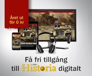 Historia-digitalt-2020