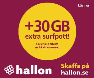 hallon-billig-surf-till-alla