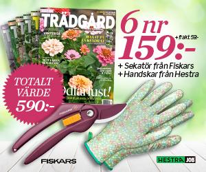 allt-om-tradgard-sekator-handskar