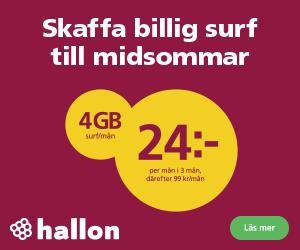 hallon-midsommar-2021