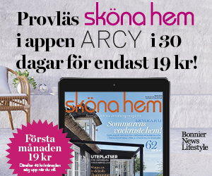 skona-hem-digitalt-19kr