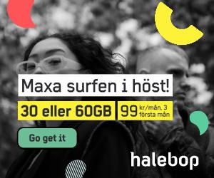 halebop-maxa-surfen