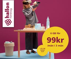 hallon-foretag-6gb99kr