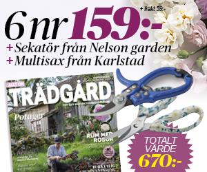 allt-om-tradgard-nelson-sekator-karlstad-mutisax