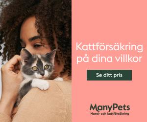 manypets-katt-och-hundforsakring